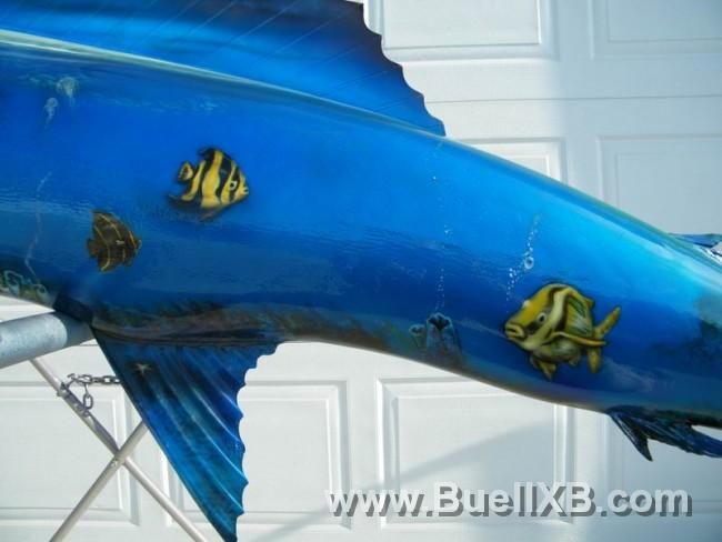 http://www.buellxb.com/buell_images/2032_20111111064938_L.jpg