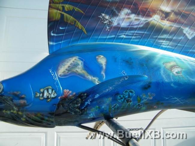 http://www.buellxb.com/buell_images/2032_20111111065036_L.jpg